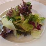 TUTTI - 料理写真:Cランチのサラダ