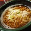 駅そば - 料理写真:かけ