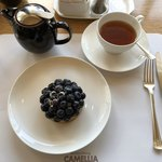 117731925 - ブルーベリータルトと紅茶