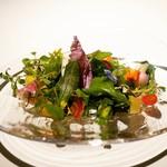 レフェルヴェソンス - ☆お野菜たち(#^.^#)☆