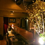 バー・サルバドール - 素敵な空間