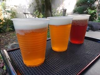 こぼこぼ - 3種類飲み比べ(800円)