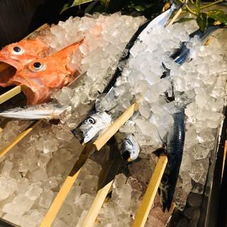 【食材】山口県産の鮮度が高い旬の魚を毎日仕入れています