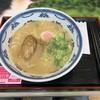 岸和田サービスエリア(下り線)スナックコーナー - 料理写真:白湯ラーメン