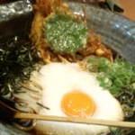 11814493 - 山掛け天ぷら(山芋と黄身と海老天2本)