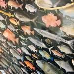 あなぐま亭 - 魚のポスター