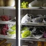 118322759 - 冷蔵庫のぶどう達