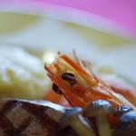 ピノ - 蝦(えび)