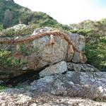 おかしの清香堂 - 日本最大級のさざれ石 [大御神社]