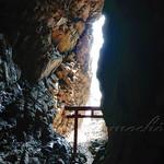 おかしの清香堂 - 鵜戸神社(龍宮)の昇り龍 [大御神社]