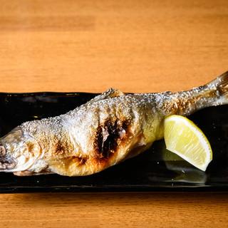 <6~8月限定>癖のない淡水魚!支笏湖産・チップが500円♪
