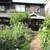 マナーハウス モトヤマ - 外観写真:お店までの庭
