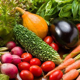 農家から直接仕入れ!朝採れ「鎌倉野菜」
