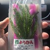 宮下商店 - 料理写真:杉ようかん 150円