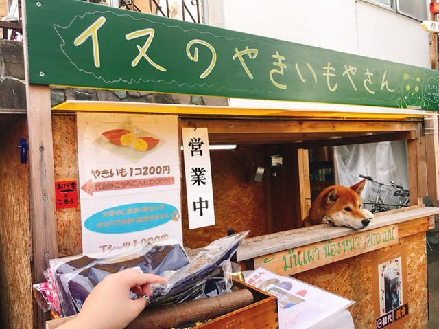 犬 の 焼き芋 や さん