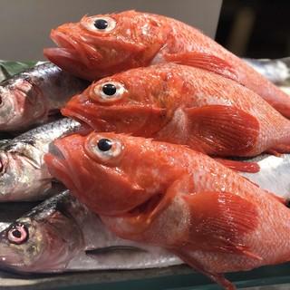 """魚屋が母体の海鮮居酒屋""""魚真""""だから出来るハイパフォーマンス"""