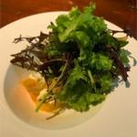 Nodorosso - 柿とリコッタチーズのサラダ