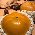 炭とワインと日本酒 イルフェソワフ - うきは赤司農園さんの大秋柿