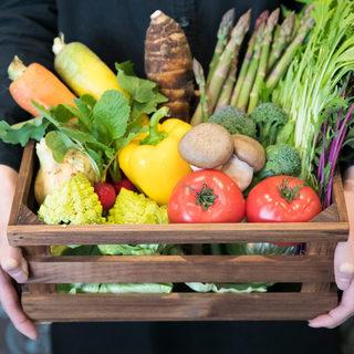 【産地直送】地元生産者の愛が詰まった新鮮野菜