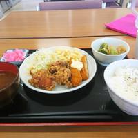 チャレンジ食堂-本日のランチ