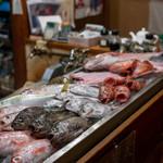 さかな工房 丸万 - 2019.10 カウンターにズラリと並んだ地魚たち