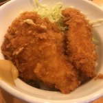 ほっぺ家はなれ 斗香庵 - タレカツ丼