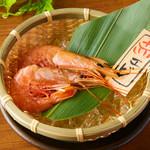 単品浜焼き【海鮮】