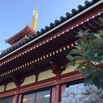 119522313 - 浅草寺