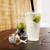 ムラタ青果店 - ドリンク写真:ヘベスサイダーとカットフルーツ