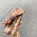 あけみちゃん号 - 料理写真:少しおまけしてくれたマグロの串焼き