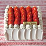 平五郎 - 料理写真:SNOW DOME ガトーフレーズ スペシャリテ (クリスマスケーキ2019)