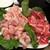 悦悦飯店 - 料理写真:牛・豚肉