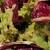 グレーヌ - 料理写真:美味しいドレッシング