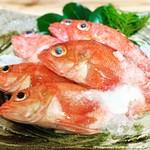 """浜潮 - 高級魚""""キンキ""""身が柔らかく口の中でとろけます。"""
