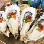 炉端屋台 囲み屋 - 料理写真:毎日豊洲から新鮮な牡蠣を仕入れ、リーズナブルに提供!岩手・宮城産等の風味豊かな牡蠣をご堪能ください♪