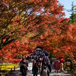 飯田 - 南禅寺