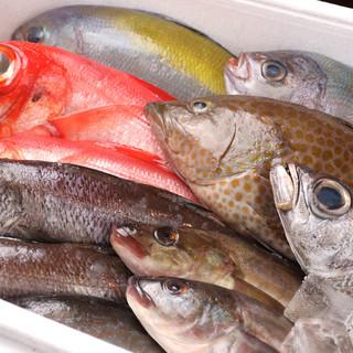 \豊洲市場直送/旬を追う新鮮魚介や豪勢な海の幸に囲まれて…!