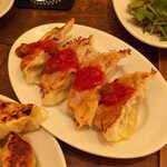 Gatito - ごぼうと牛肉のサルサ餃子。オススメはテキーラハイボールとの組合せ!