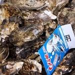海の駅しおじ - 2,000円でたっぷり牡蠣を購入しましたよ。 今年が一番安く買えたかも知れません。 来年もここで買おうかな。