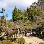 Takadatsuusenen - 正寿院