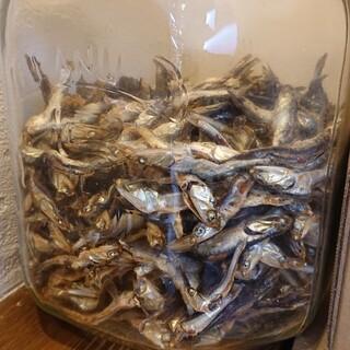 中華そばや 和凡 - 料理写真:一番奥のカウンターに飾られている煮干