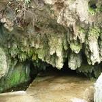 12087970 - 「千仏鍾乳洞」・・美しく荘厳でした。