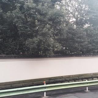 店前の根津美術館の壁がどこか京都を彷彿させます