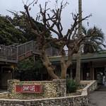 イル キャンティ カフェ 江の島 - [外観] お店 看板 & 玄関付近 全景♪W ②