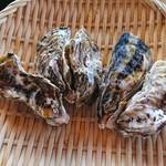 牡蛎処 桝政 - 室津牡蠣