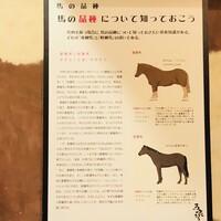 がんばれニッポン馬肉道場 馬喰ろう-