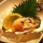 12099870 - 岩牡蠣