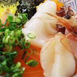北海道料理ユック 北の海道 - 海鮮丼