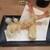 手打蕎麦 松永 - 料理写真:「車海老天麩羅」