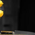 sanmi - sanmiオリジナルのレモンサワーが復活予定